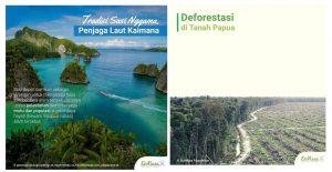 deforestasi-hutan-papua-sebagai-wilayah-konservasi-dunia